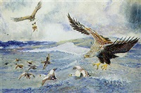 sea eagles swooping by john guille millais