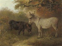 two donkeys in a wooded glade by edward smyth