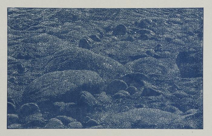 cima del mar by franz gertsch