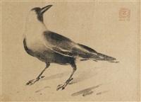 study of a crow by zainul abedin
