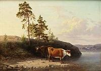 boskap vid vatten by nils anderson