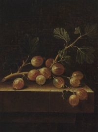 still life of gooseberries on a stone ledge by adriaen s. coorte