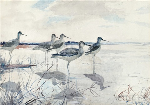 yellowlegs by frank weston benson