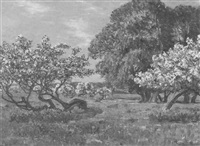 trees in bloom in june by august vilhelm dencker