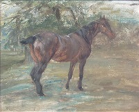 outdoor study with horse by robert l. alexander