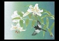 mountain lily by mutsuro kawashima