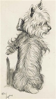a study of a dog on its back, a study of a terrier (illustrated)(2 works, various sizes) by cecil charles windsor aldin