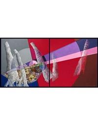 oggetti in costante mutamento (diptych) by laura migotto