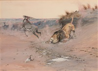 lion attacking gazelle by olaf c. seltzer