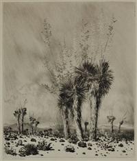 springtime - paradise valley - arizona by george elbert burr