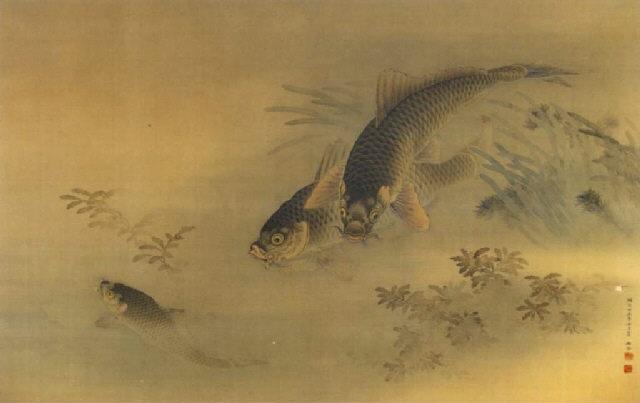 carp with water weeds by yokoku noguchi