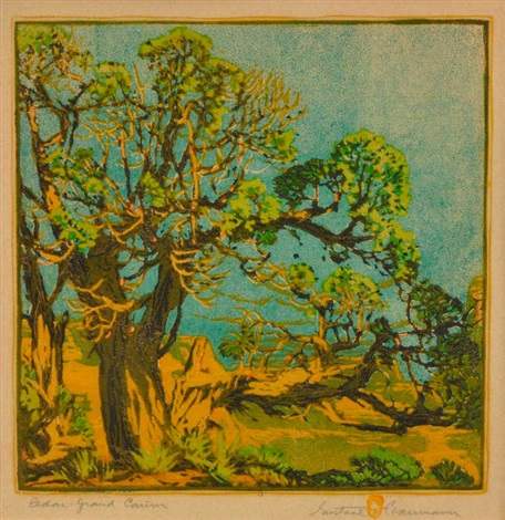 cedar grand canyon by gustave baumann