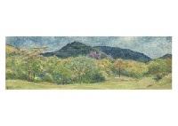 nara kasuga mountain view by shintaro yamashita