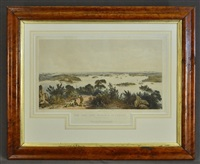 the city and harbour of sydney, from near vaucluse by george french angas