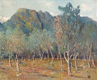 orchard beneath cape mountains by nita spilhaus