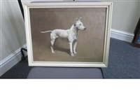 an english bull terrier: champion houghton ladylove by alfred grenfell haigh