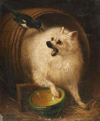 chien au tonneau surpris par une pie by henriette ronner-knip