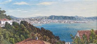 wellington harbor from the south by claude muncaster