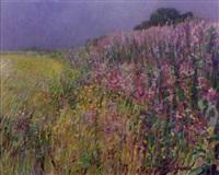 wilde flora by cor van loenen