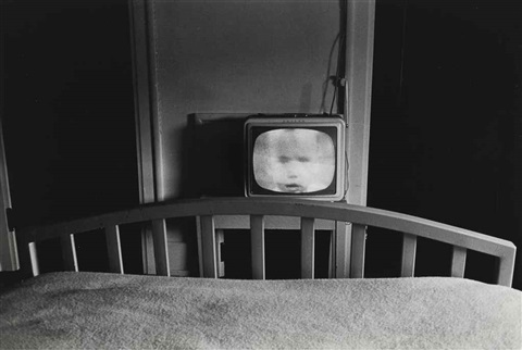 galax, va by lee friedlander