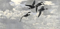 pintails against the light by keith shackleton
