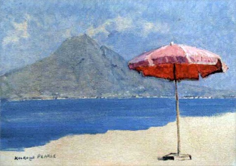 vico umbrella by edward holroyd pearce