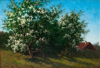 fruit-tree in bloom by lars theodor billing