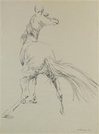 study of horse by ismail gulgee