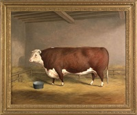 portrait of a prize bull by h.j. quintin