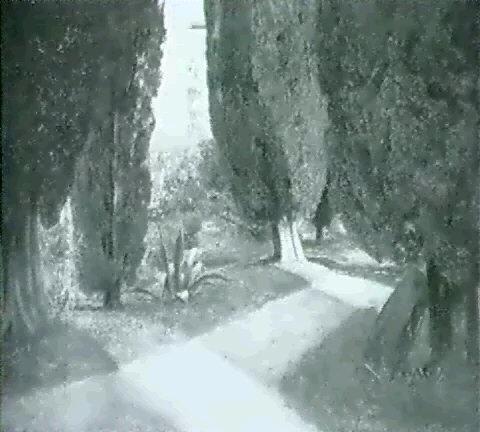 im park von san vigilio lago di garda by curt agthe