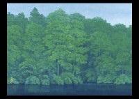 green reflection by minami yoshinobu