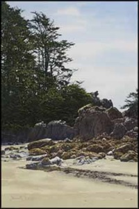 in the tofino area by simon camping