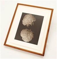 chrysanthème by bruce rae
