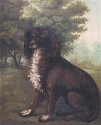 irish water spaniel in a landscape by clifton tomson