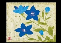 bellflower by kohei morita