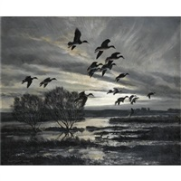 duck over wetlands by peter scott
