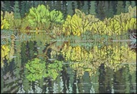 wild rice, lily pods and summer breezes by ted godwin