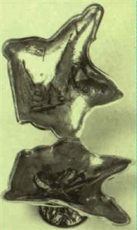 una ostra by elvira alfageme