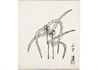 dayflower by kiyoshi yamashita