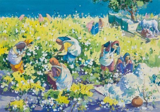 picking cotton by sayed haider raza