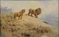 lion and lioness in savannah landscape by george edward lodge