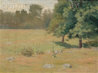 summer pasture by charles henry hayden