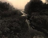 dreamed brook by john wawrzonek