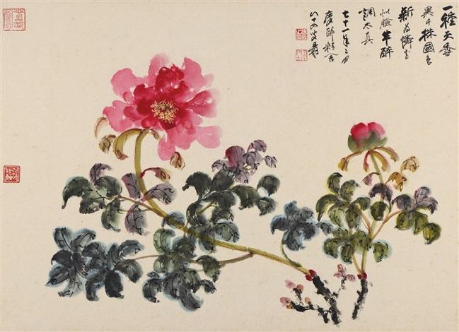 花卉peony by zhang daqian