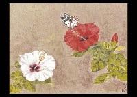 southern flowers by kenji yoshioka