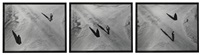 couple at intersection (from the fervor series) (in 3 parts) by shirin neshat