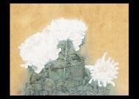 chrysanthemum by haruto yoshii