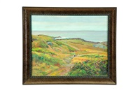 monhegan island by george g. adomeit