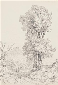 trees (study) (set of 4) by joseph murray ince