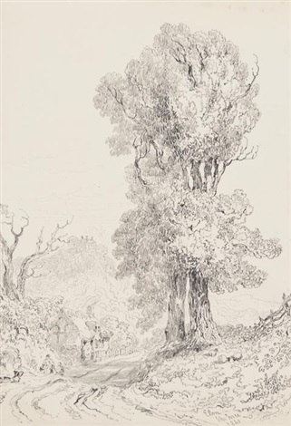 trees study set of 4 by joseph murray ince